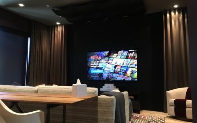 Clean Power Drives High Performance Audio / Video Systems in San Francisco Couple's Media Room